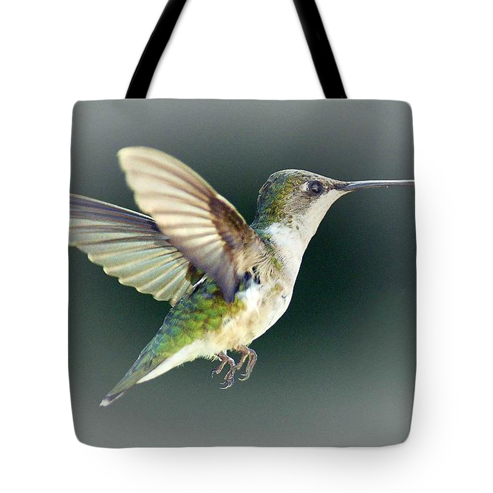 Bird Tote Bag featuring the photograph Free Spirit by Arnie Goldstein