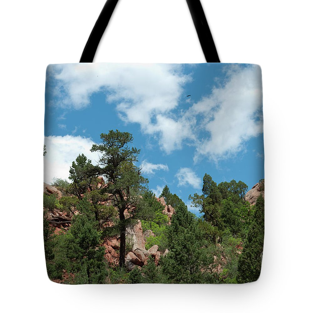 Garden Of The Gods Tote Bag featuring the photograph Freebird by Paulette B Wright