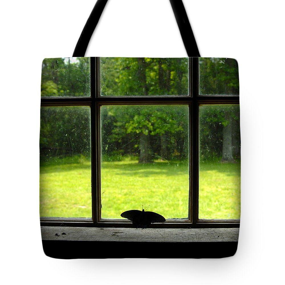Freedom Awaits Me Tote Bag featuring the photograph Freedom Awaits Me by David Lee Thompson