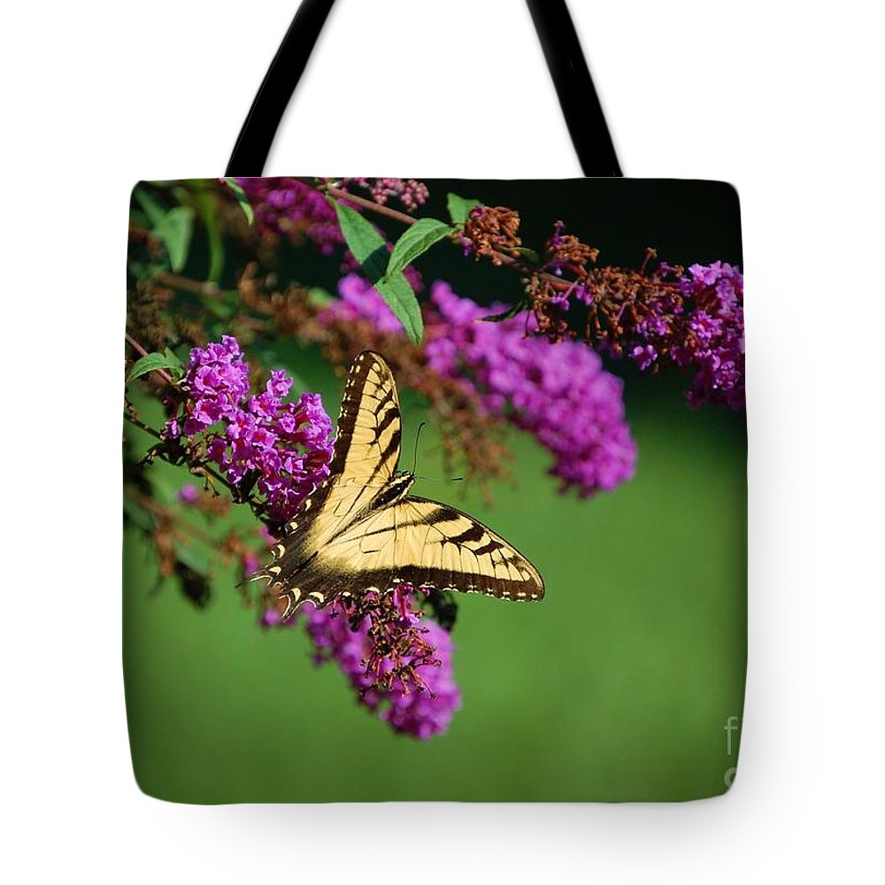 Butterfly Tote Bag featuring the photograph Freedom by Debbi Granruth