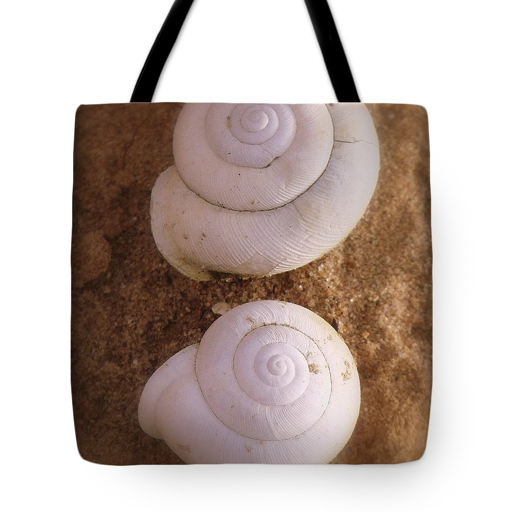 Still Life Tote Bag featuring the photograph French Horns by Ed Smith