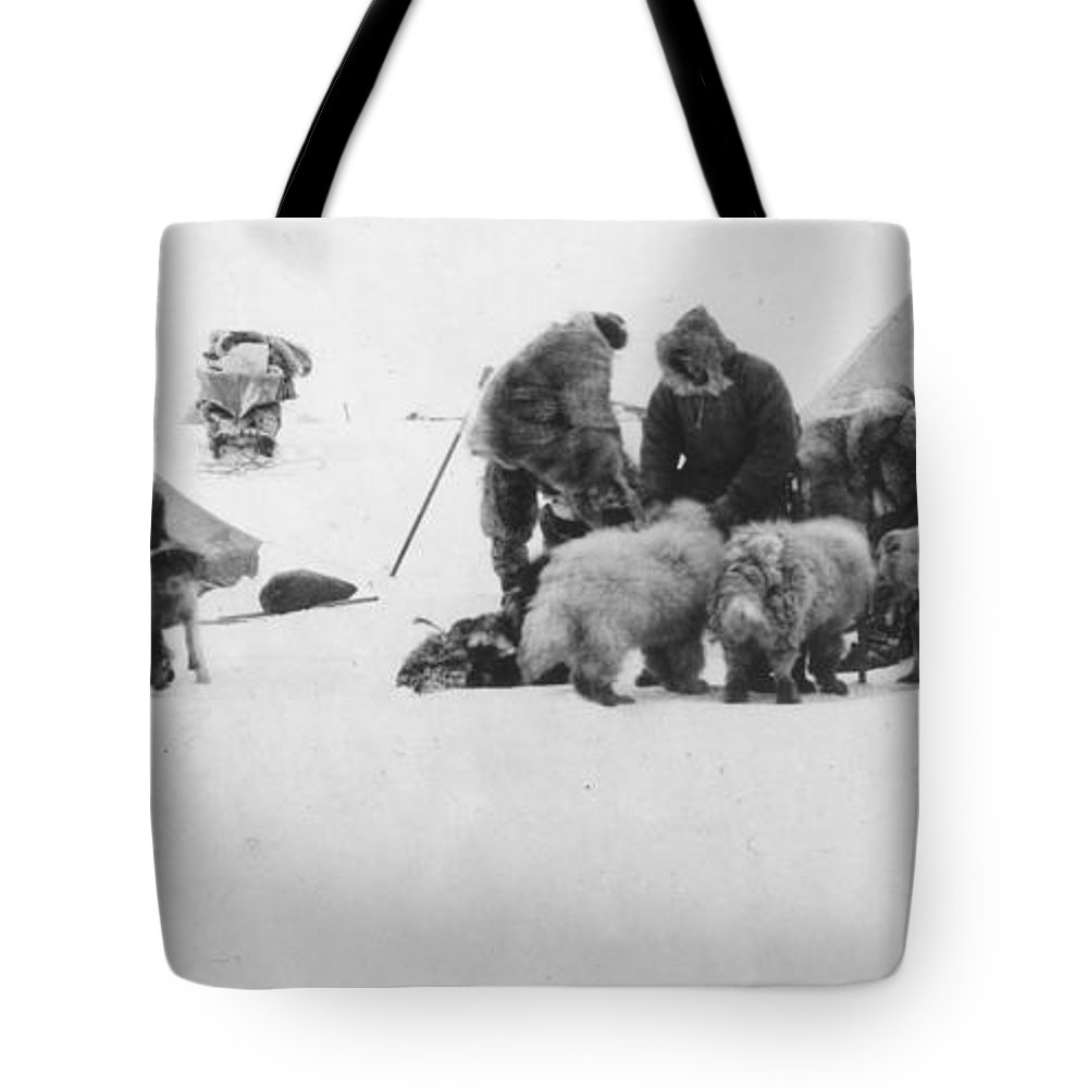 1890s Tote Bag featuring the painting Fridtjof Nansen (1861-1930) by Granger