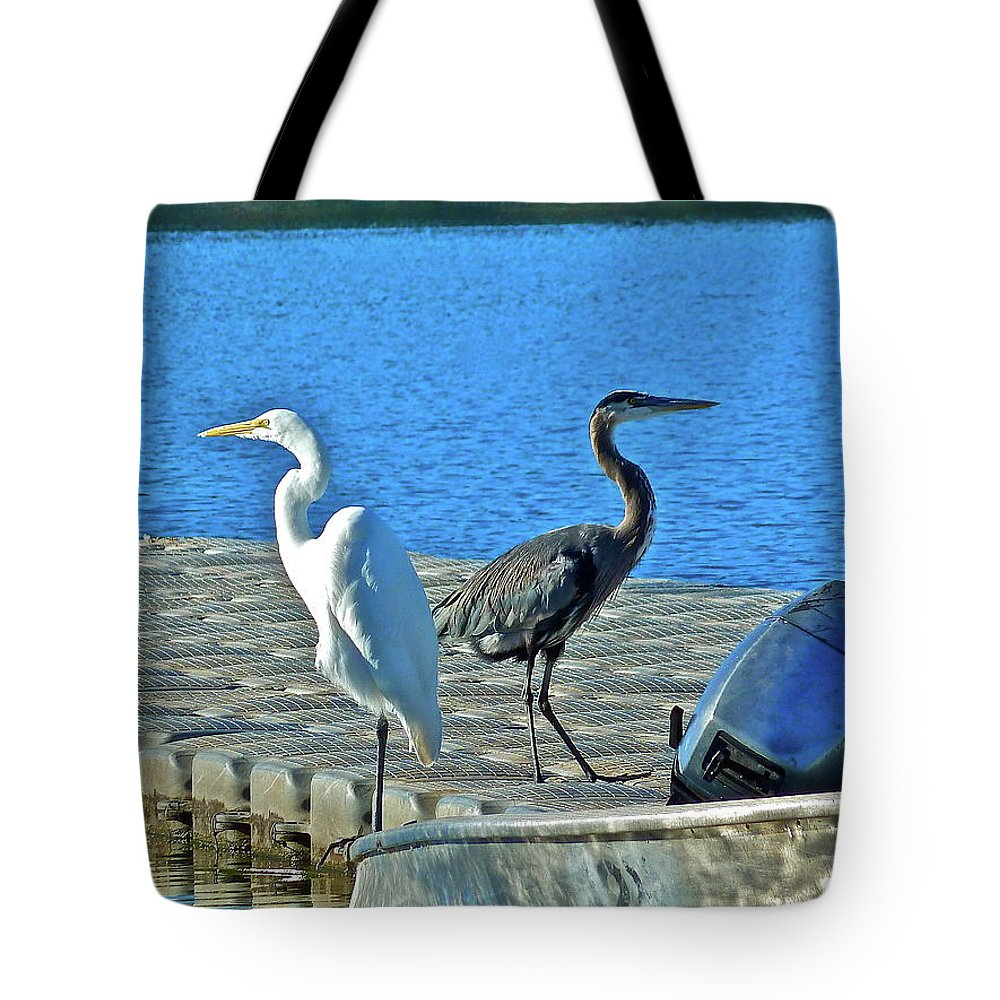 Birds Tote Bag featuring the photograph Friend Or Foe by Diana Hatcher