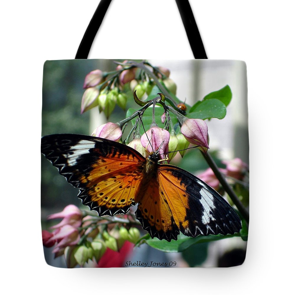 Photography Tote Bag featuring the photograph Friends Come In Small Packages by Shelley Jones