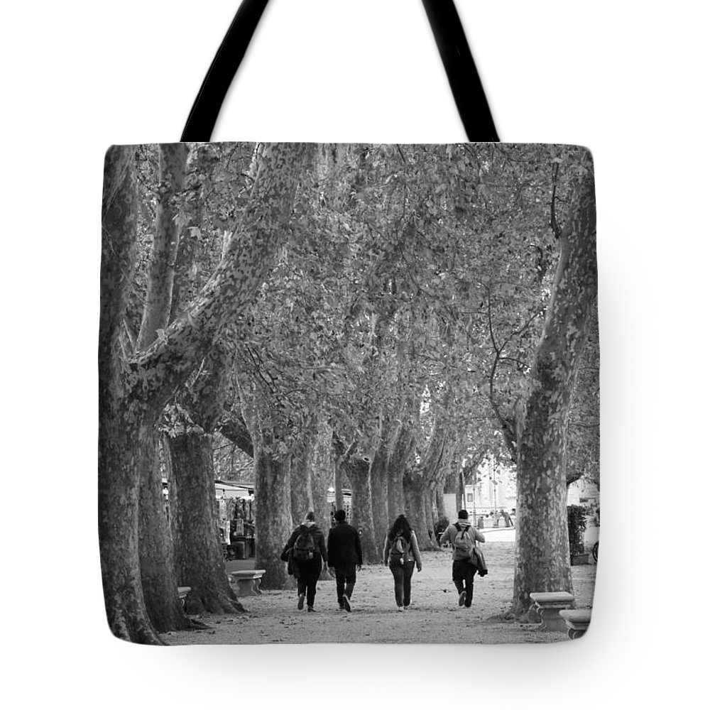 Landscape Tote Bag featuring the photograph Friendship by Nicole Dunkelberger