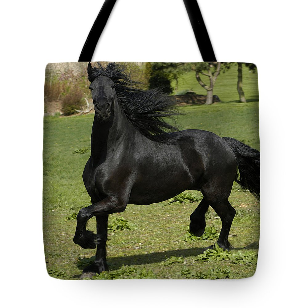 Friesian Tote Bag featuring the photograph Friesian Horse In Galop by Michael Mogensen