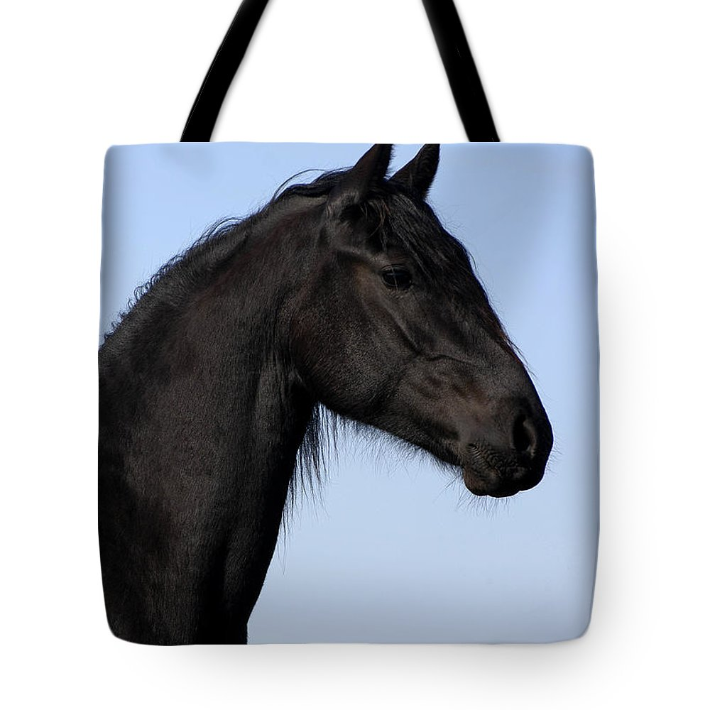 Friesian Tote Bag featuring the photograph Friesian Stallion by Michael Mogensen