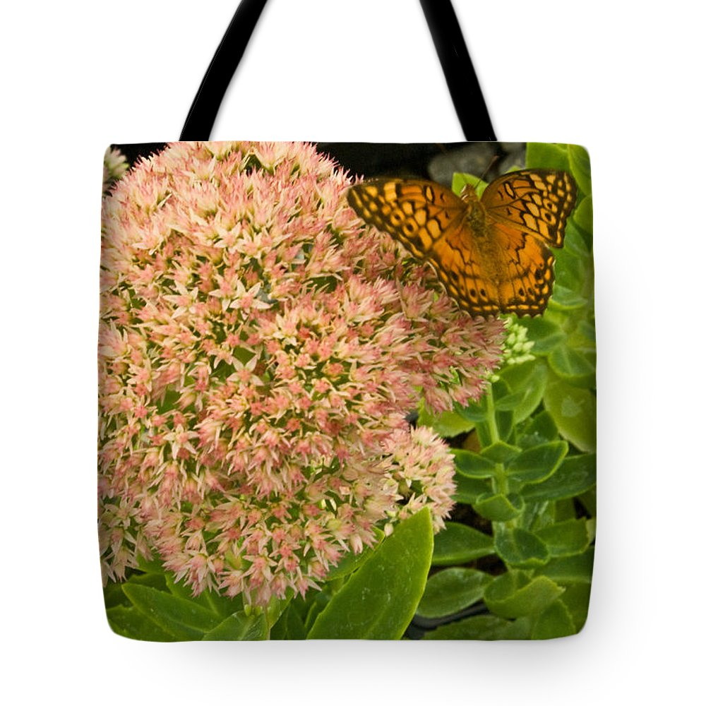 Fritillary Tote Bag featuring the photograph Fritillary On Flower by Douglas Barnett
