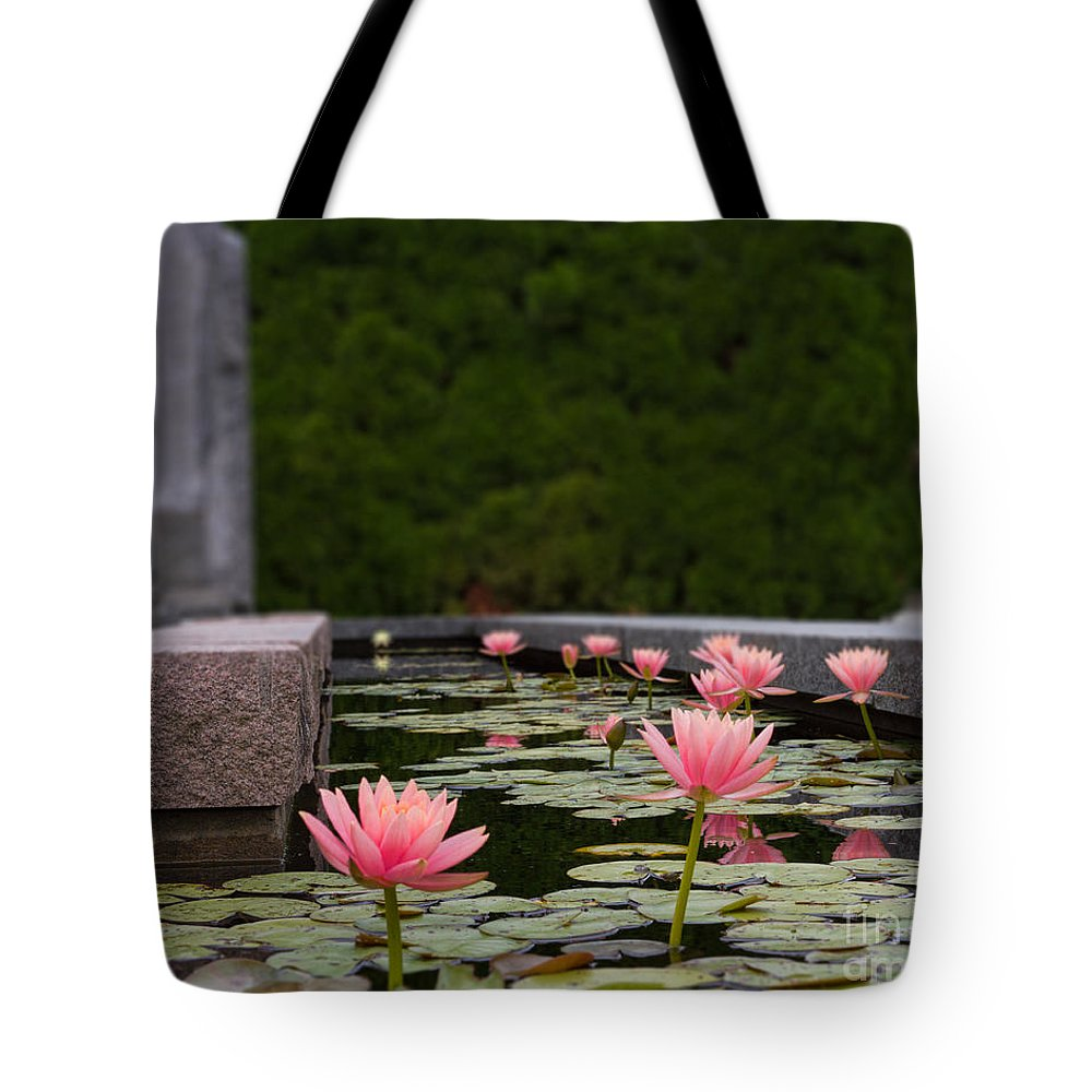 Lily Pads Tote Bag featuring the photograph Frog's Eye View by Terry Weaver