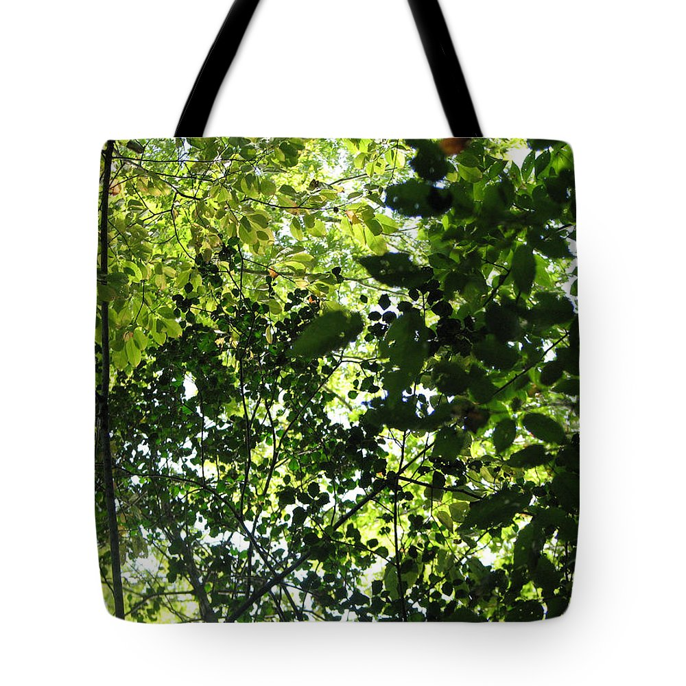 Leaf Tote Bag featuring the photograph From Above by Stacey May