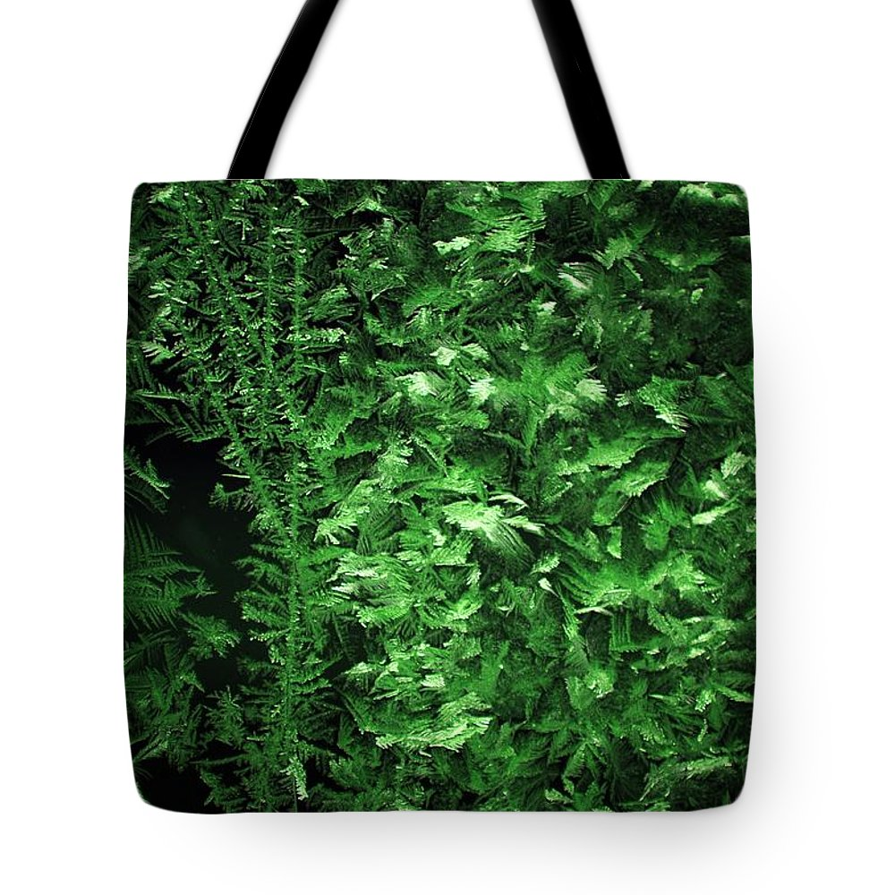 Photography Tote Bag featuring the photograph Frost On Window 2 by David Lane