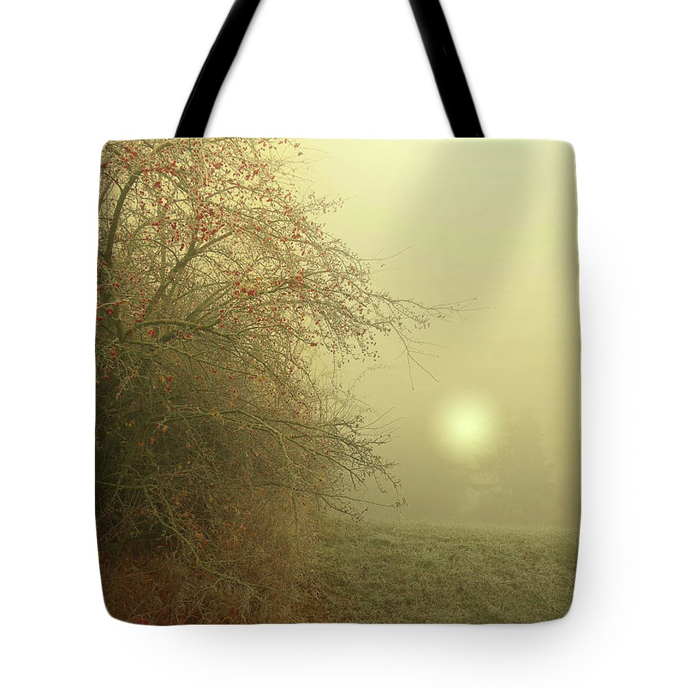 Frost Tote Bag featuring the photograph Frosty Morning by Alex Lim