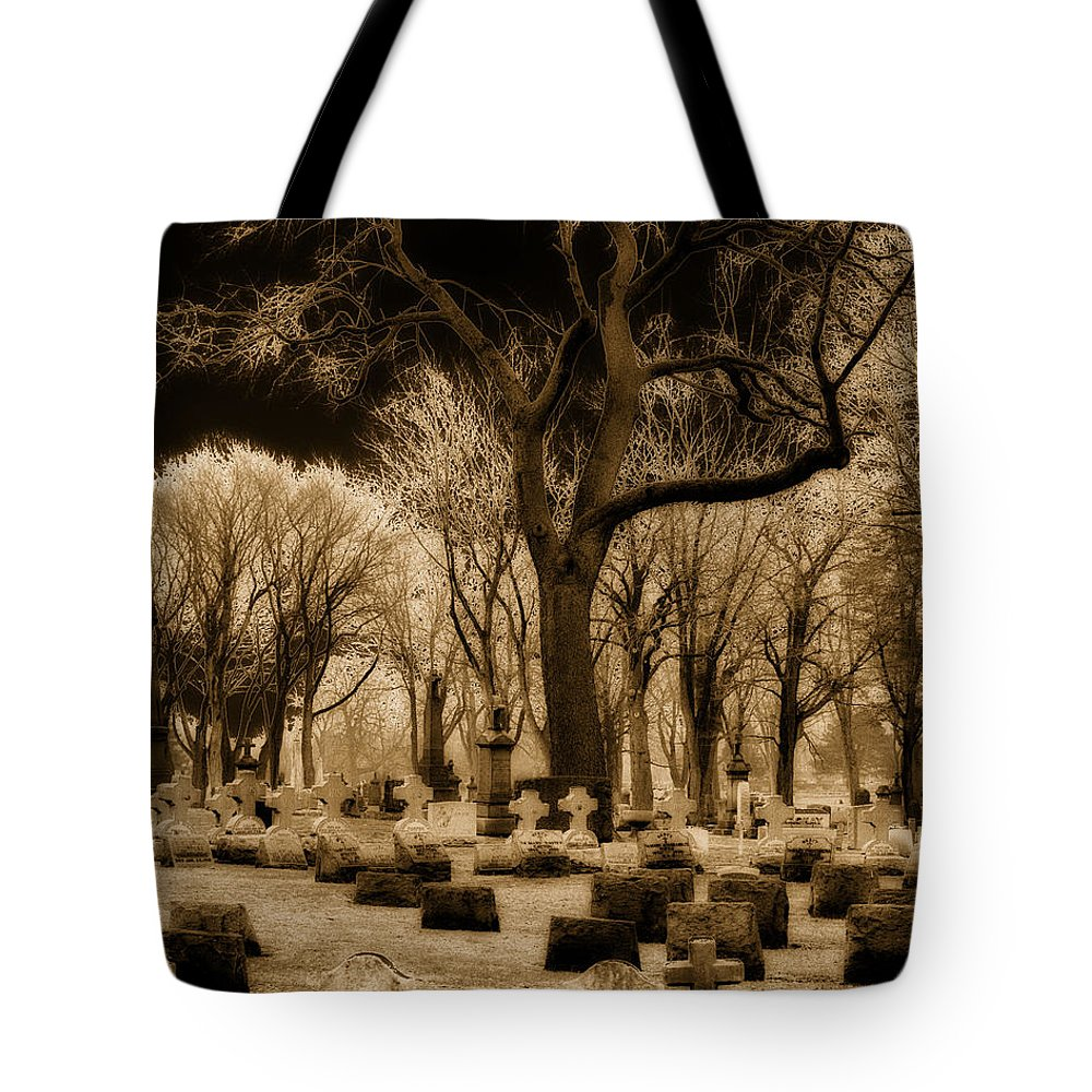 Teasels In Winter Tote Bag featuring the photograph Frosty Tops by Gothicrow Images