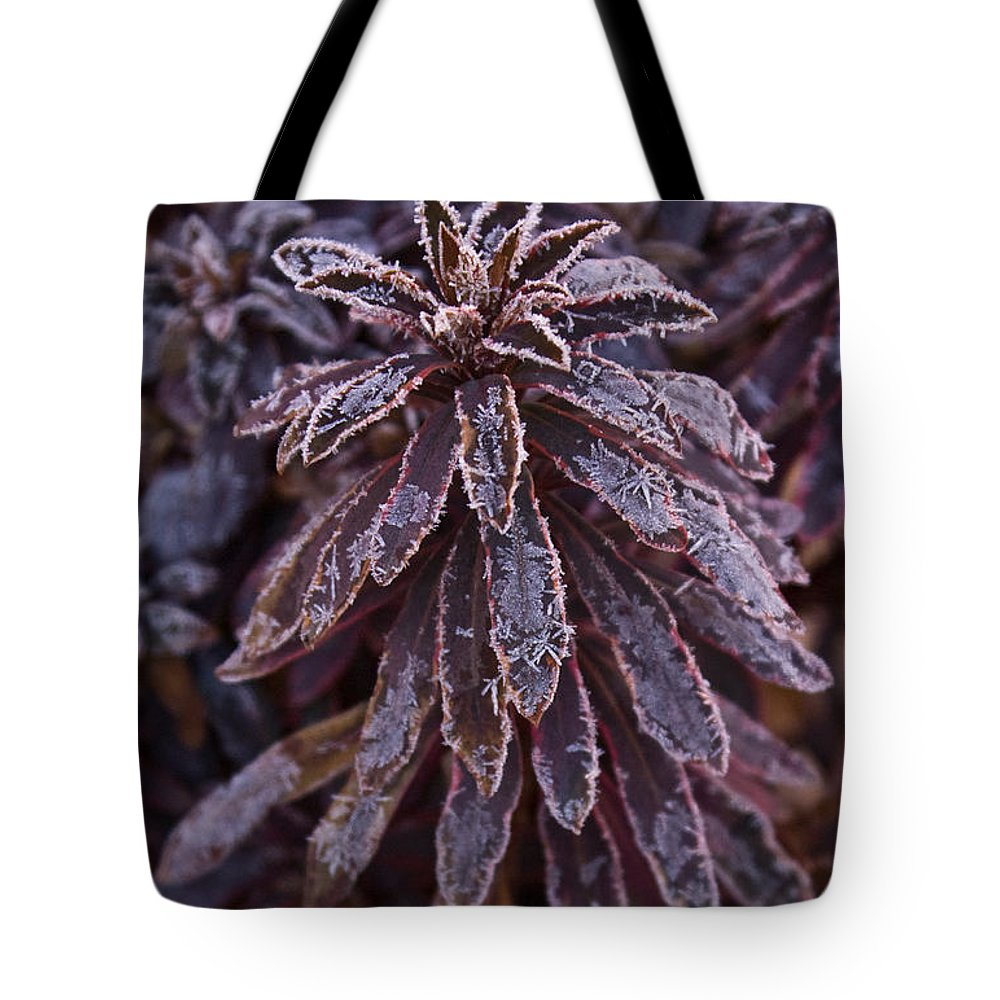 Christmas Tote Bag featuring the photograph Frozen Christmas by Douglas Barnett