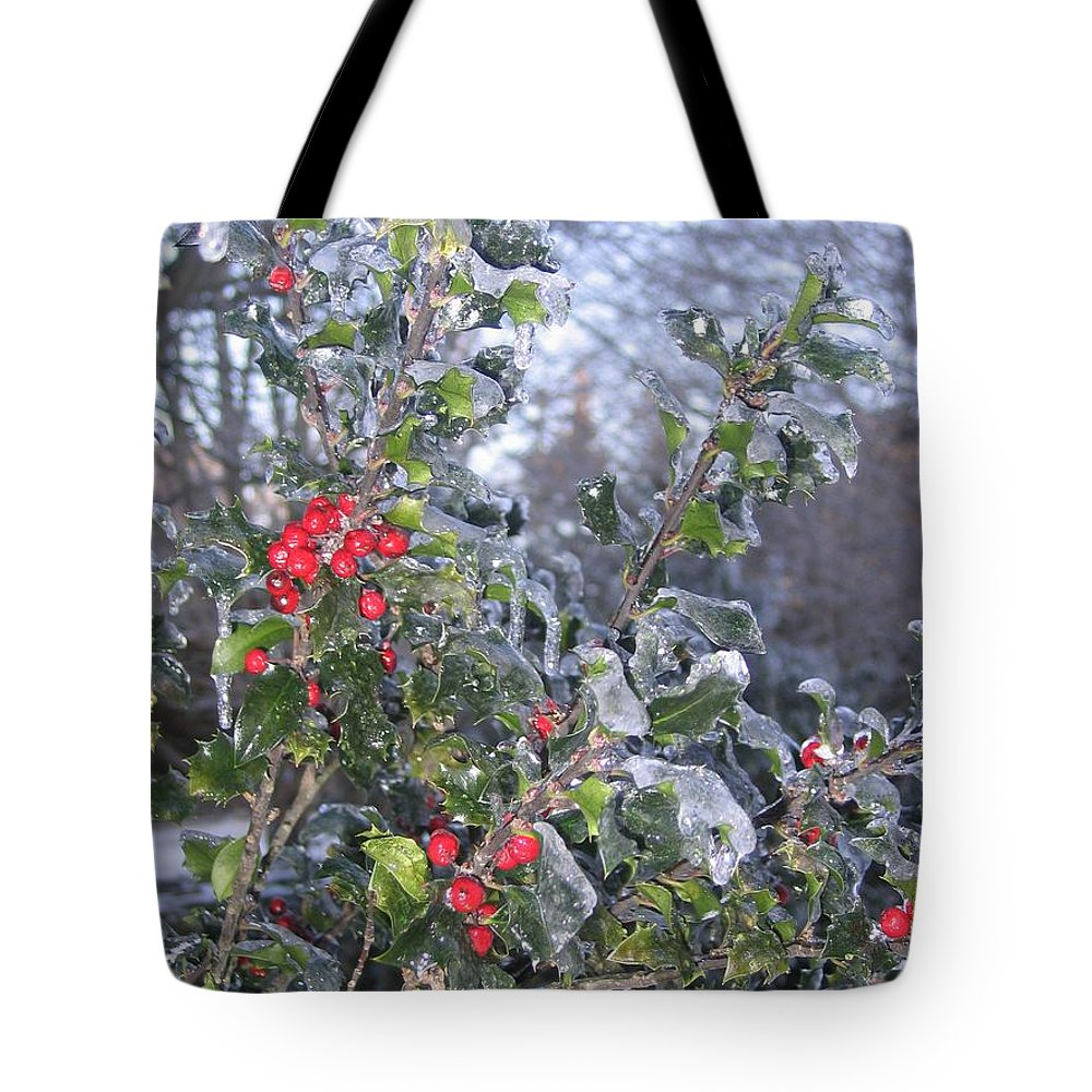 Winter Tote Bag featuring the photograph Frozen In Time by Paula Emery
