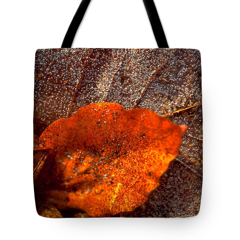 Leaf Tote Bag featuring the photograph Frozen Leaf by Michael Mogensen