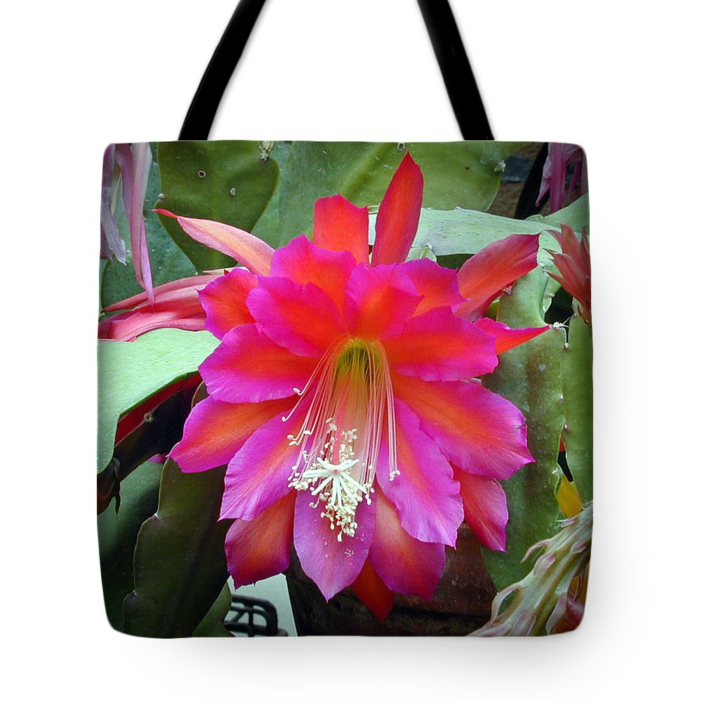 Fuchia Tote Bag featuring the photograph Fuchia Cactus Flower by Douglas Barnett
