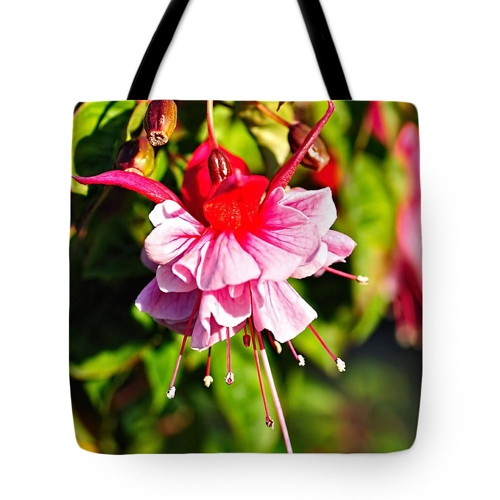 Photography Tote Bag featuring the photograph Fuchsia Enjoying The Sunshine by Kaye Menner