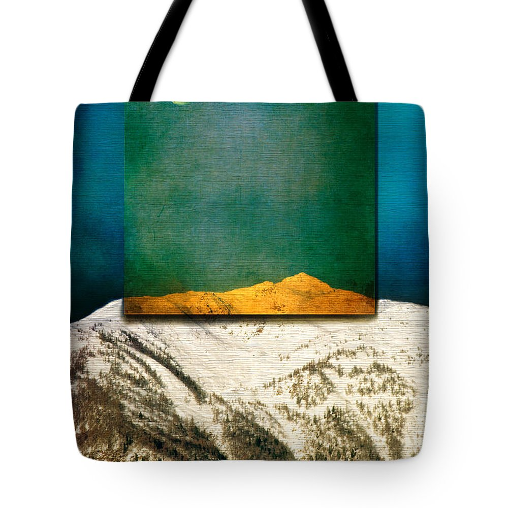 Moon Tote Bag featuring the photograph Full Moon by Silvia Ganora