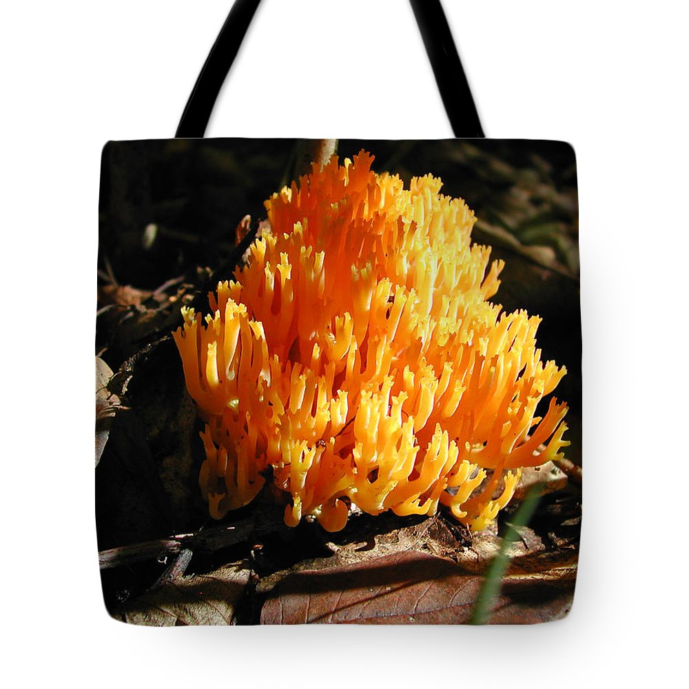 Photography Tote Bag featuring the photograph Fung1 by Steven Scanlon