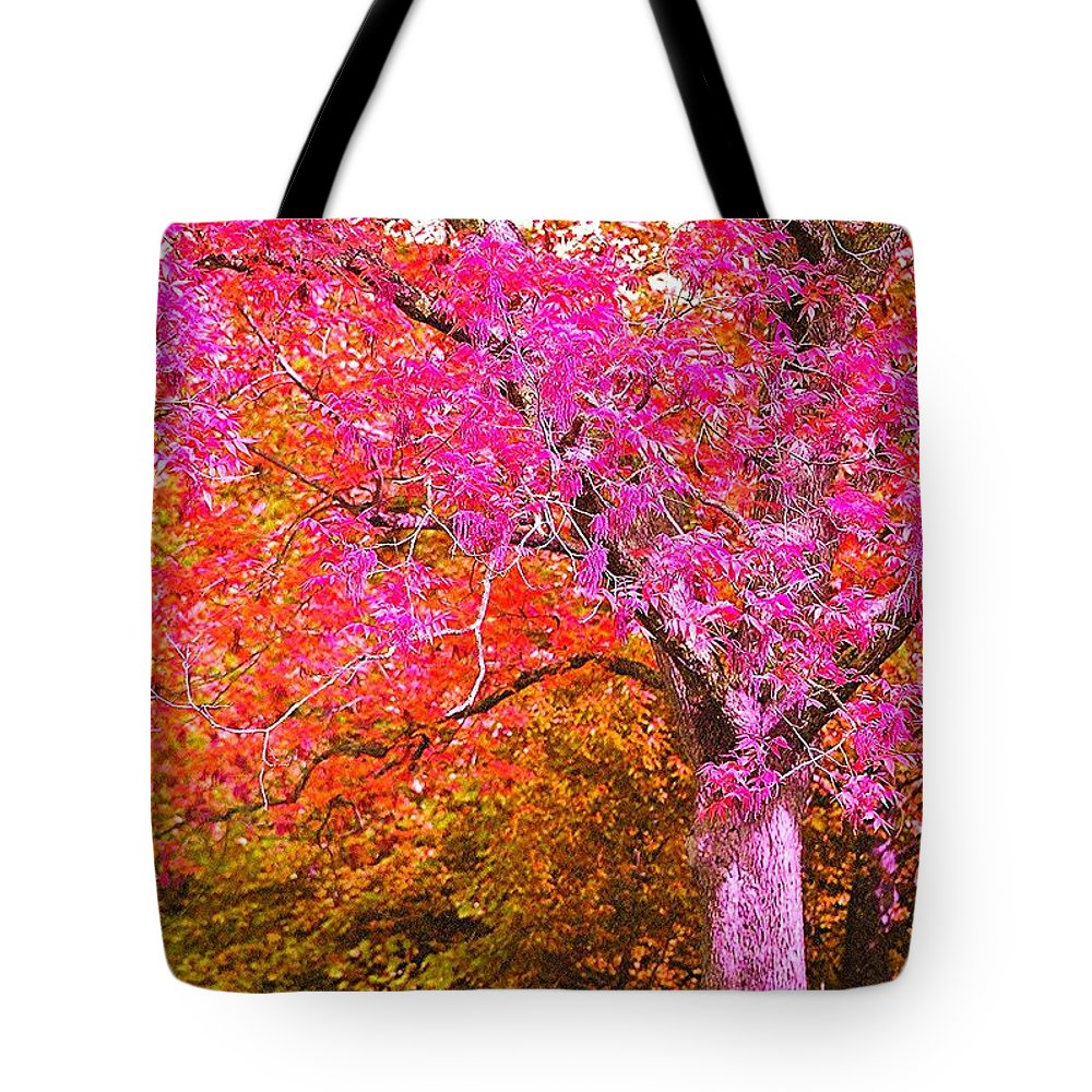 Fuschia Tote Bag featuring the photograph Fuschia Tree by Nadine Rippelmeyer