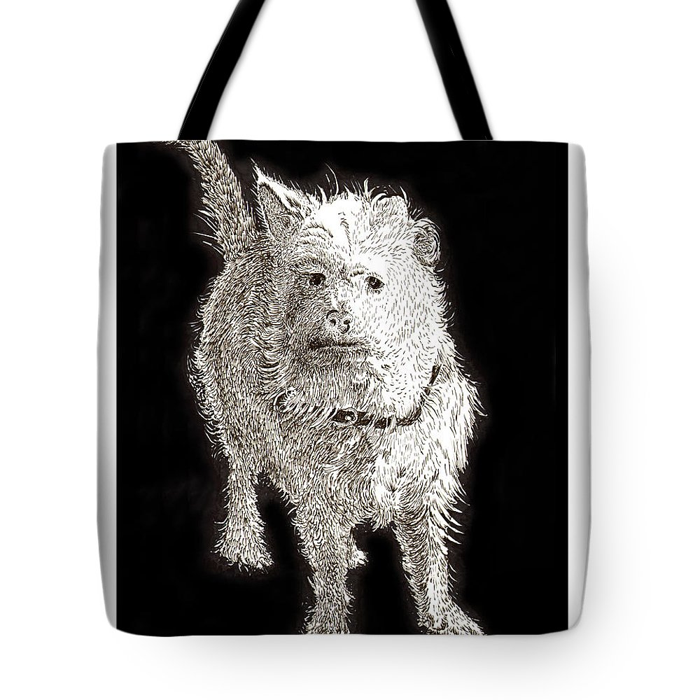 Ink Drawings Of Dogs  Dog Prints  Prints Of Dogs  Pen & Ink Drawings Of Dogs  Cute Black & White Dog Prints  Tote Bag featuring the painting Fuzzy Molly by Jack Pumphrey