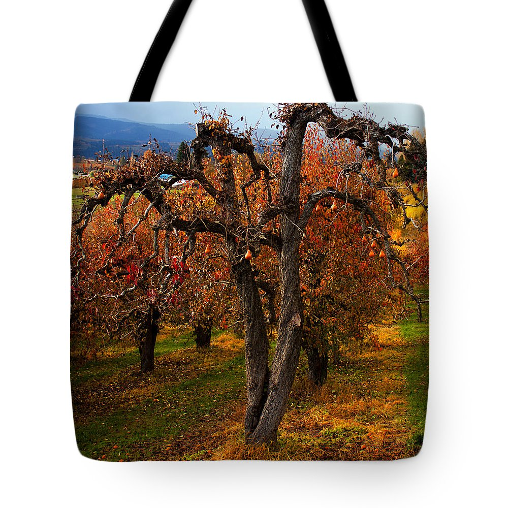 Pear Tote Bag featuring the photograph Gabriel's Message by Merrill Beck
