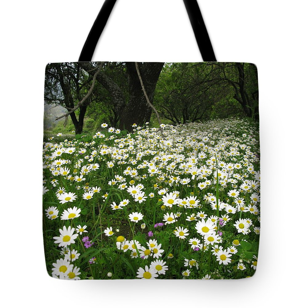 Field Of Daisies Tote Bag featuring the photograph Gaia Blooming by Andonis Katanos