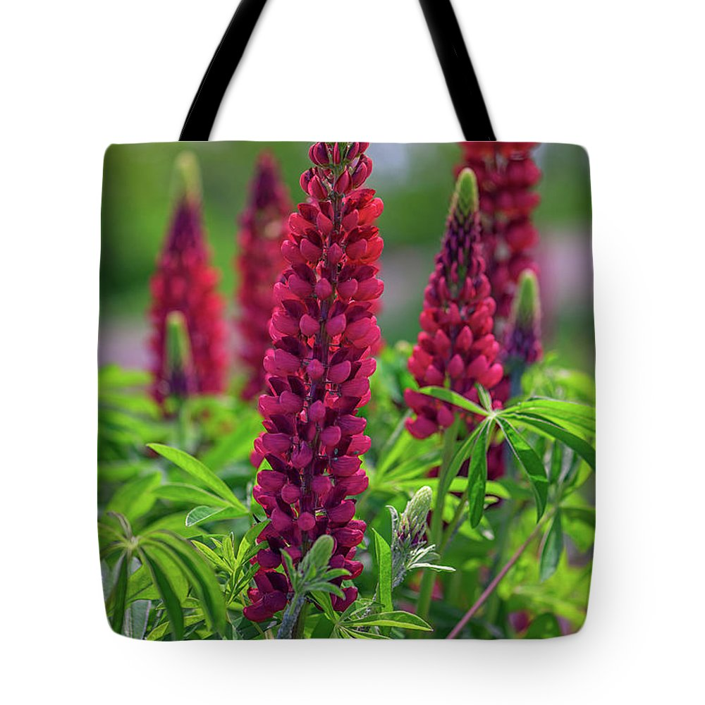 Red Tote Bag featuring the photograph Gallery Red Lupines by Rick Berk