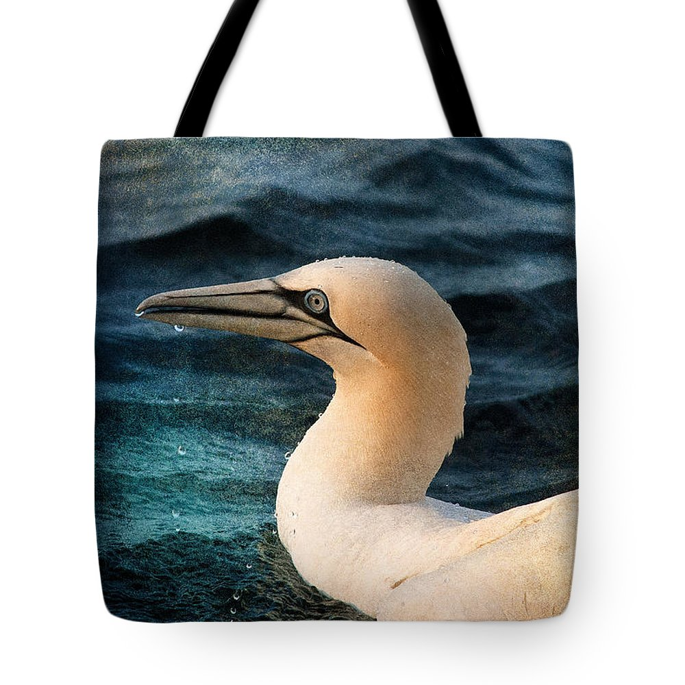 Gannet Tote Bag featuring the photograph Gannet Swim by WB Johnston