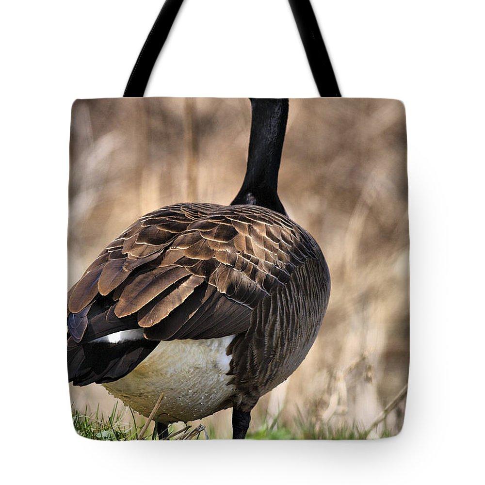 Goose Tote Bag featuring the photograph Garden Goose by Deborah Benoit