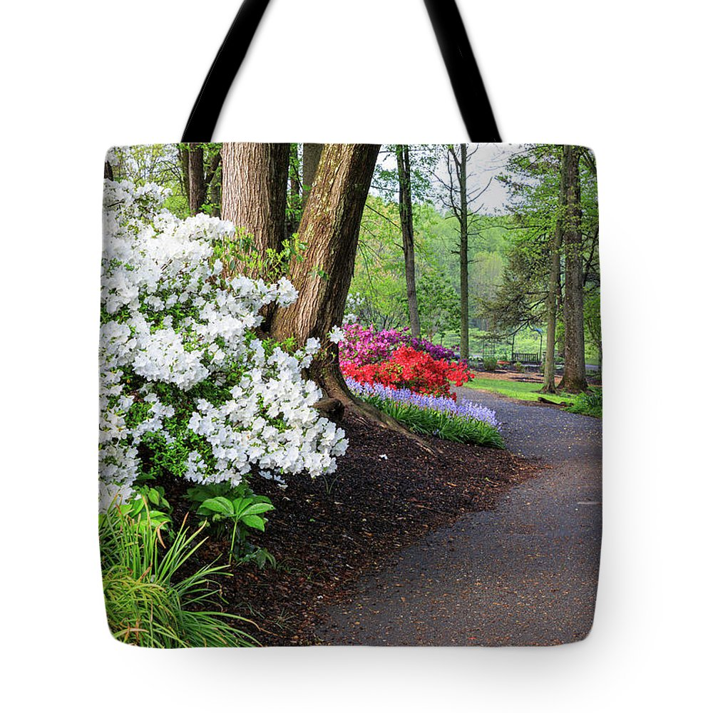 Designs Similar to Garden Path by Carol VanDyke