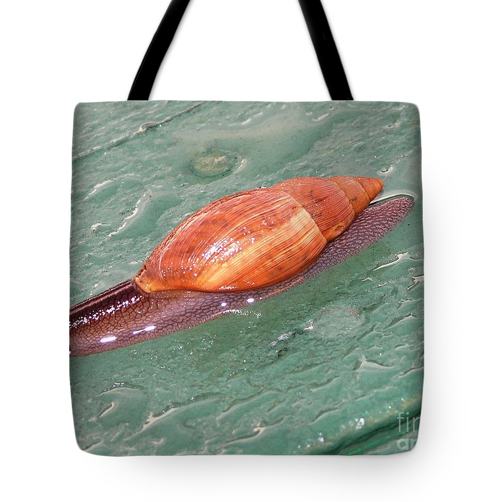 Green Tote Bag featuring the photograph Garden Snail 4 by Mary Deal
