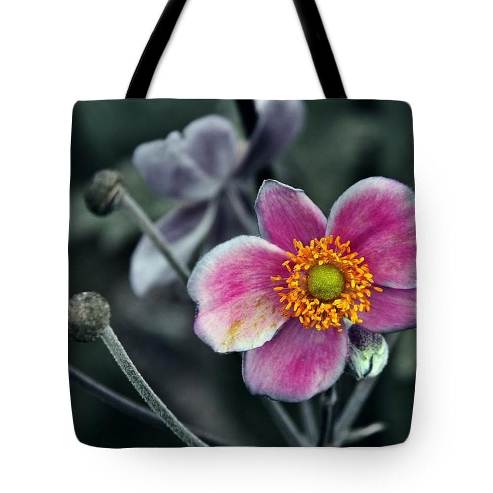 Pink Tote Bag featuring the photograph Garden Treasure by Danielle Basler