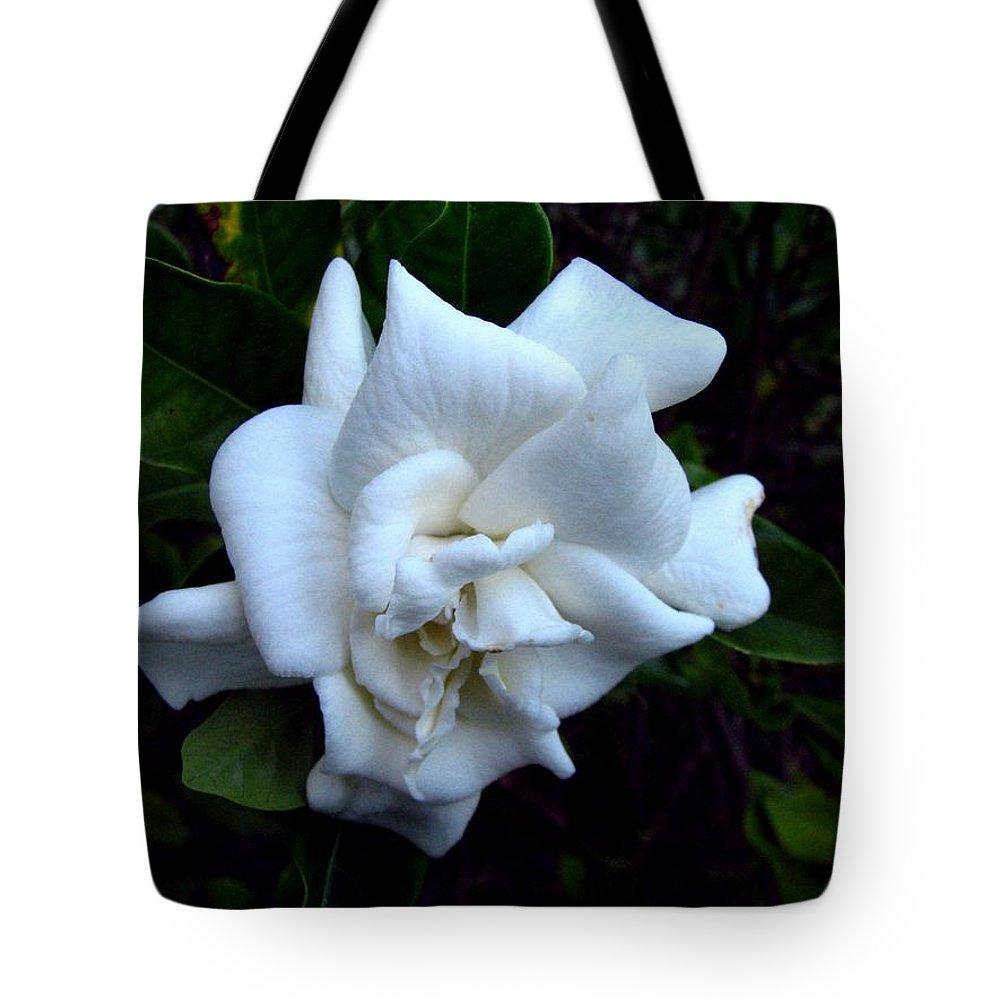Gardenia Tote Bag featuring the photograph Gardenia 3 by J M Farris Photography