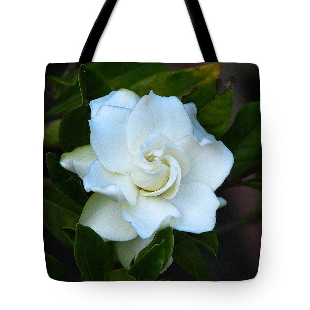 Gardenia Tote Bag featuring the photograph Gardenia 5 by J M Farris Photography