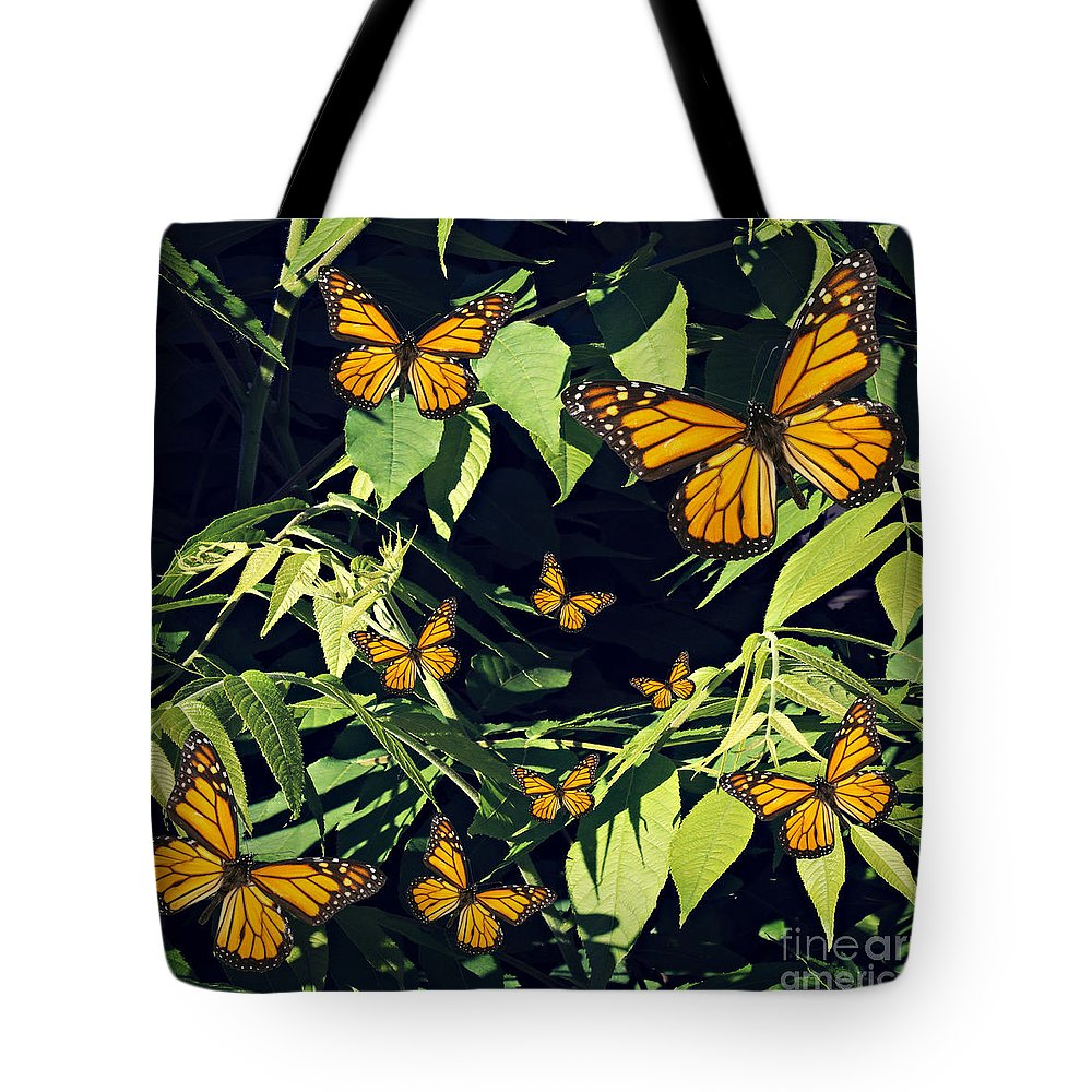 Anne Alfaro Tote Bag featuring the photograph Gathering by Anne Alfaro