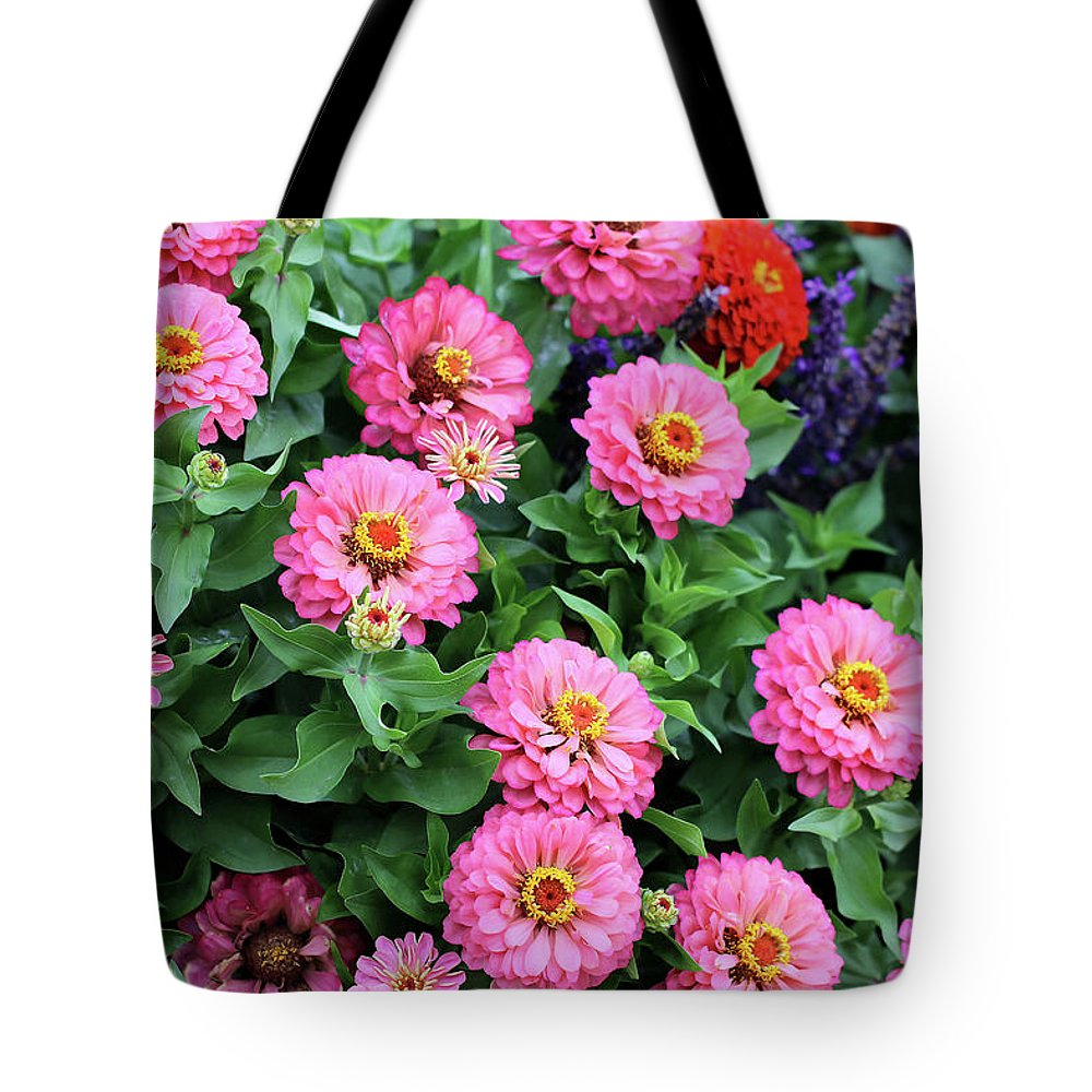 Zinnias Tote Bag featuring the photograph Gathering Of Pink Zinnias by Vanessa Thomas