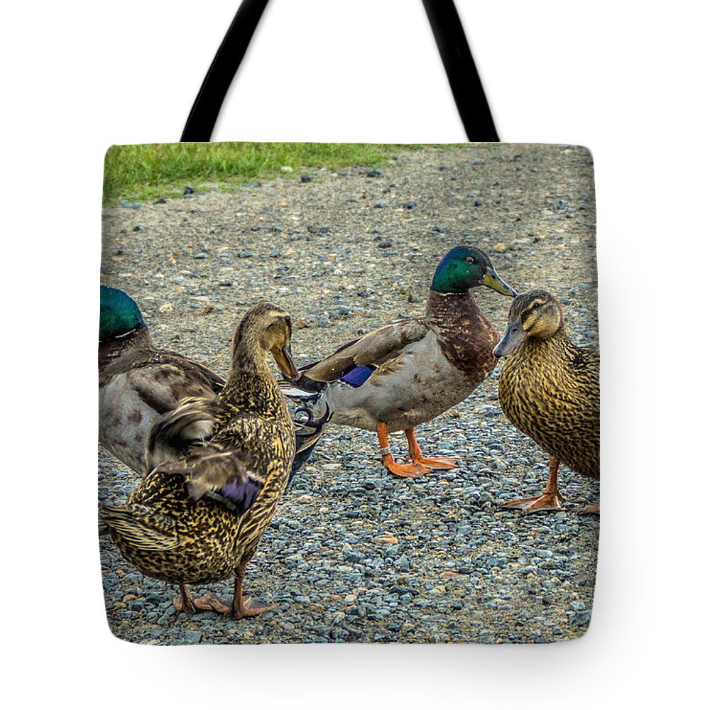 Darrell Tote Bag featuring the photograph Gathering Of The Flock by Darrell Clakley
