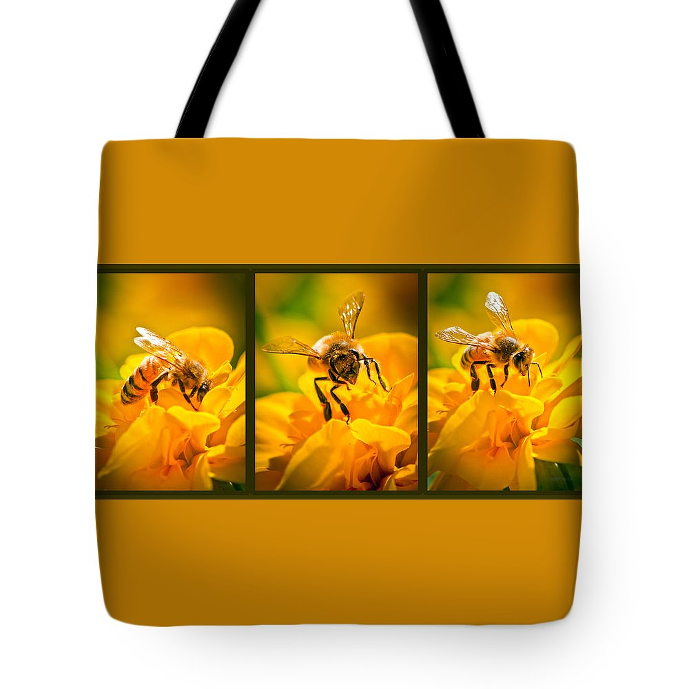 Bees Tote Bag featuring the photograph Gathering Pollen Triptych by Bob Orsillo
