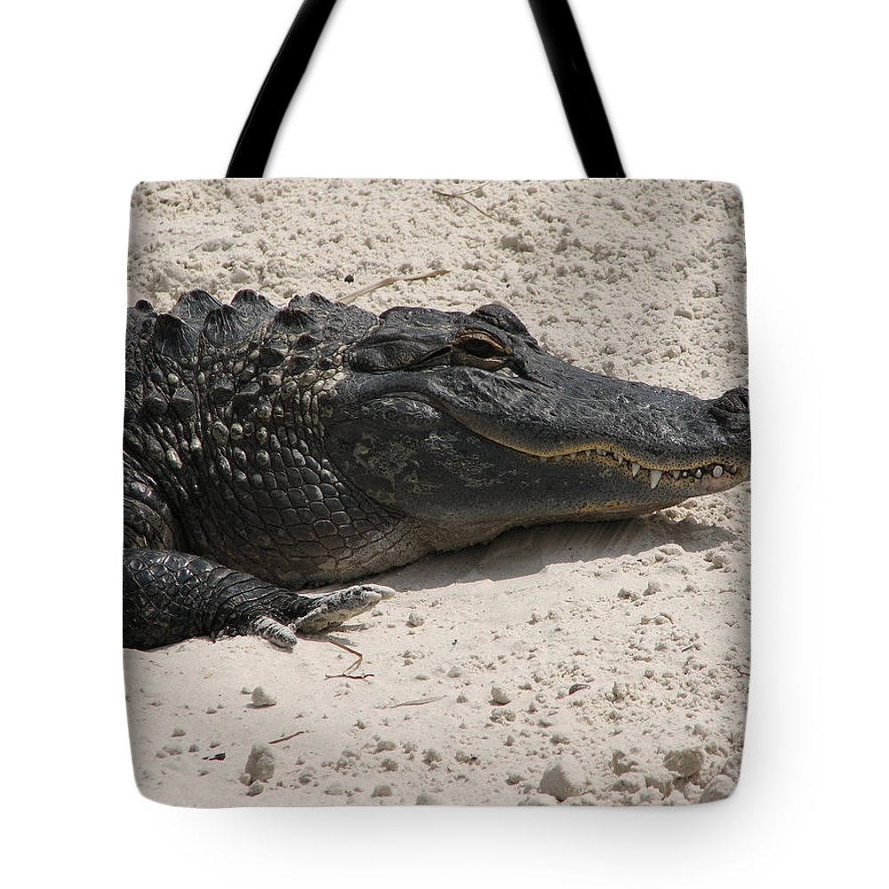 Alligator Tote Bag featuring the photograph Gator II by Stacey May
