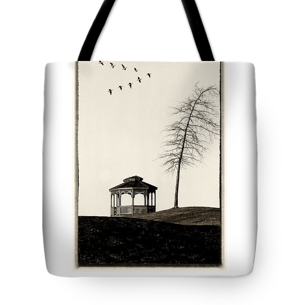Gazebo Tote Bag featuring the photograph Gazebo And Geese Poster by Mike Nellums