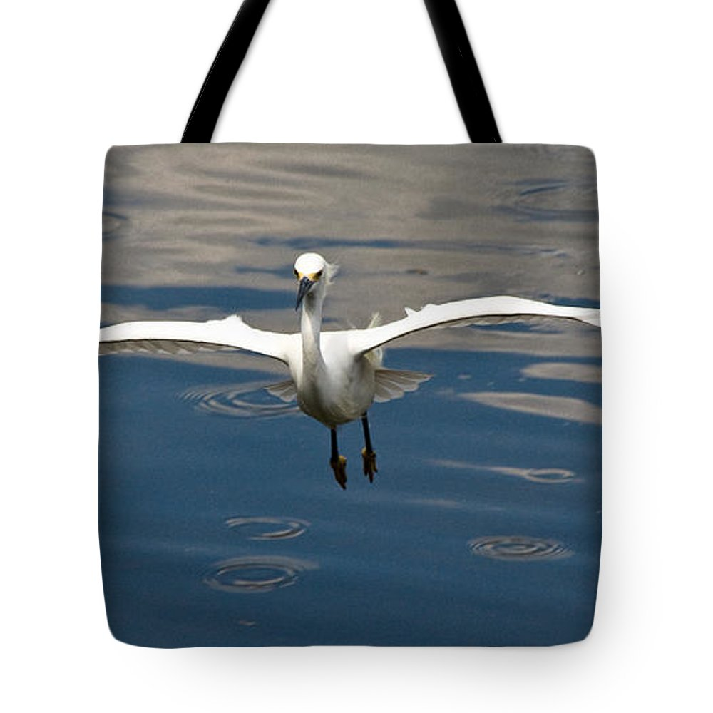 Snowy Egret Tote Bag featuring the photograph Gear Down by Christopher Holmes