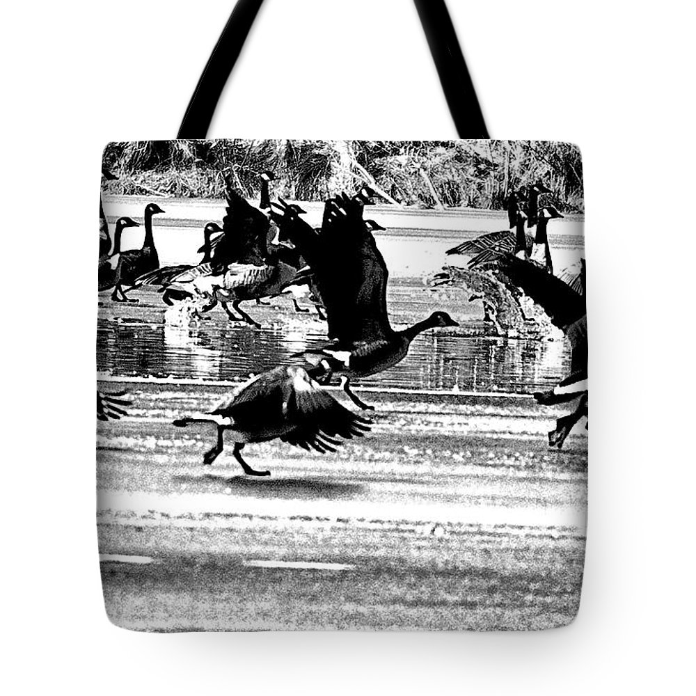 Geese Tote Bag featuring the photograph Geese On Ice Taking Flight by Bill Cannon
