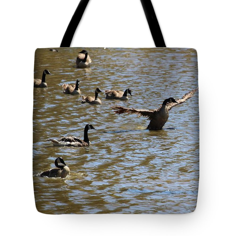 Dought Tote Bag featuring the photograph Geese On Lake June 27 2015 by Gary Canant