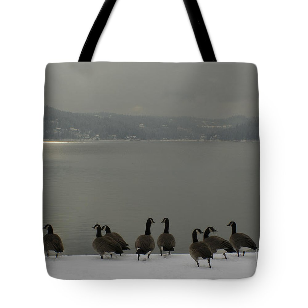 Geese Tote Bag featuring the photograph Geese On The Edge by Idaho Scenic Images Linda Lantzy