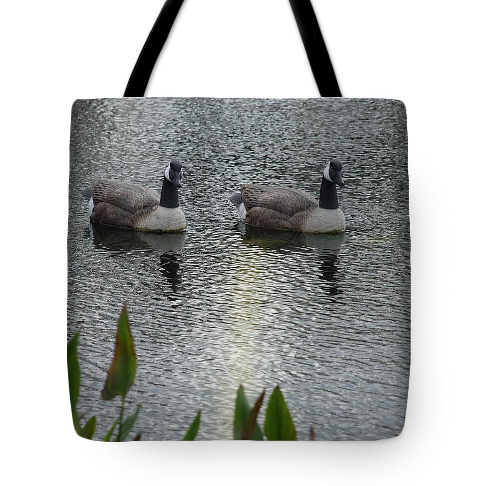 Water Tote Bag featuring the photograph Geese by Rob Hans