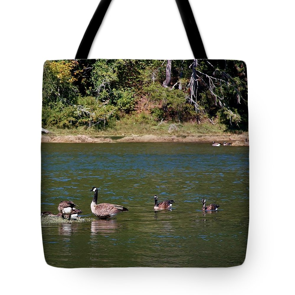 Canada Goose Tote Bag featuring the photograph Generations by Stacie Gary