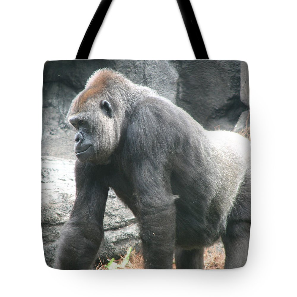 Gorilla Tote Bag featuring the photograph Gentle Giant by Stacey May