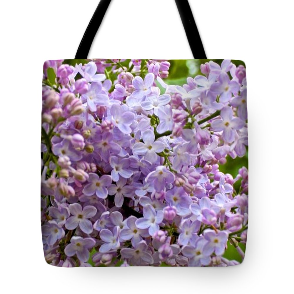Purple Tote Bag featuring the photograph Gentle Purples by Mario MJ Perron